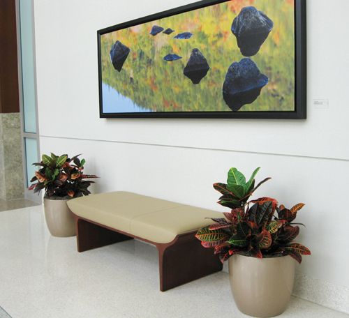 phoenix-bench-m 2